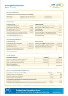 BKK Linde Arbeitgeberinformationen ab 01.01.2021 Download